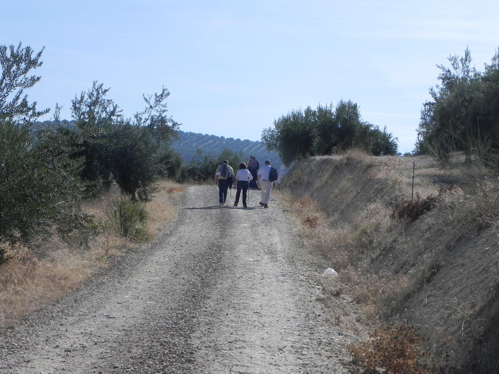camino-mozarabe-etapa-msartos-alcaudete-24-10-58