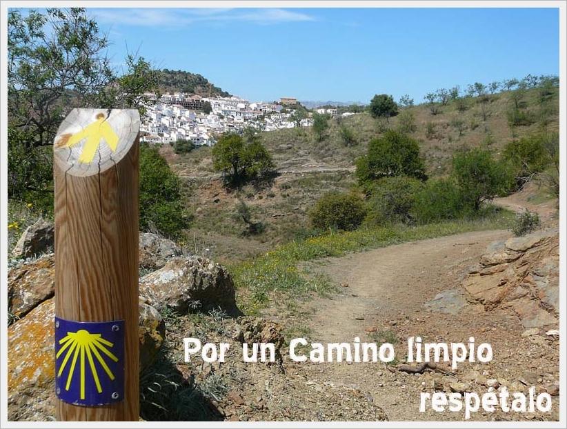 caminitolimpio1