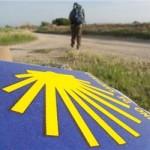 El Camino arranca el 2016 a ritmo de récord