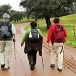 El Camino de Santiago crece con Andalucía