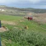 La Asociación de Málaga informa sobre sus rutas mensuales