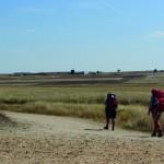 3.415 peregrinos andaluces llegaron a Santiago de Compostela en lo que va de año