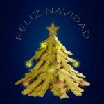 La Federación Andaluza os desea ¡Feliz Navidad!