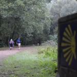 La Asociación de Jaén abre su inscripción para hacer el Camino de Santiago en julio