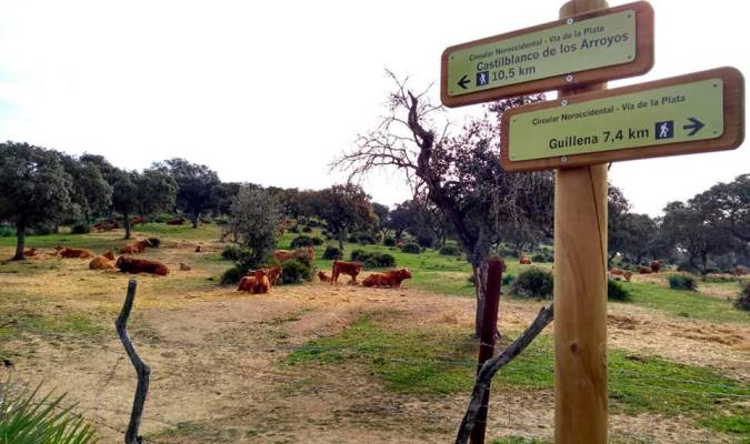 La Diputación de Sevilla mejorará la ruta del Camino de Santiago Vía de la Plata