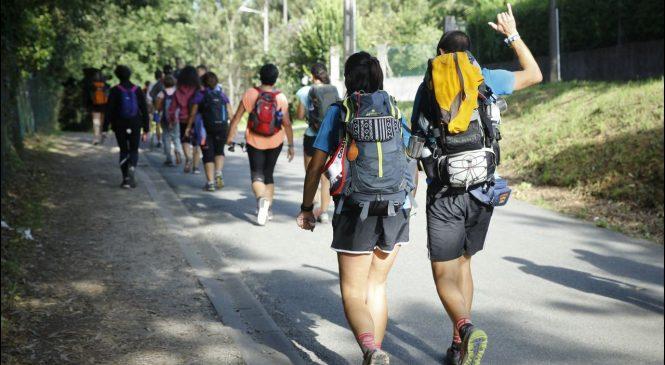 La seguridad en los Caminos de Santiago, fuera de duda